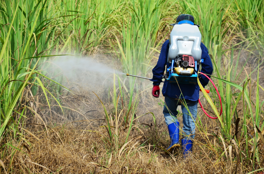 """Common herbicide classified as """"possible carcinogen"""""""