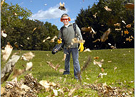 Labor-saving leaf blowers