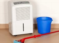 Best Dehumidifiers to Defy Dampness