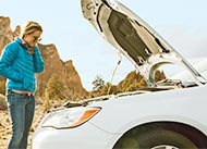 Special Report: Annual Car Reliability Survey