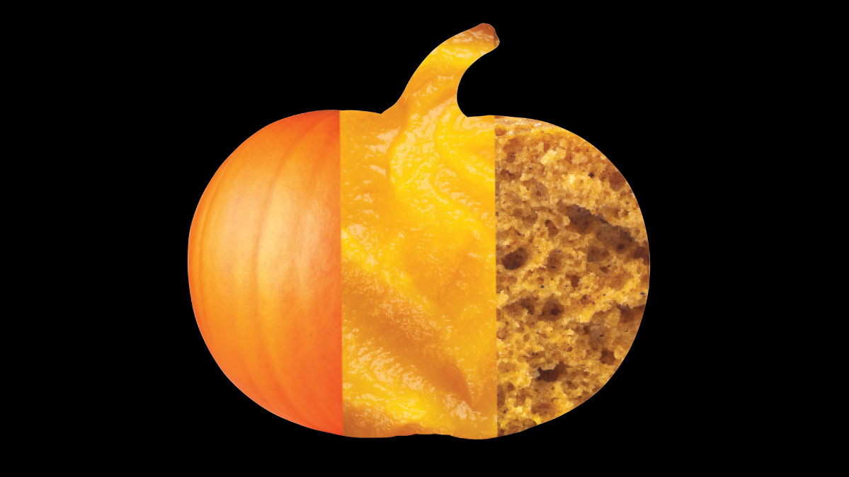 Pumpkin Facts: Fresh vs. Canned