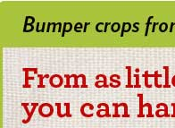 Bumper crops from your backyard!
