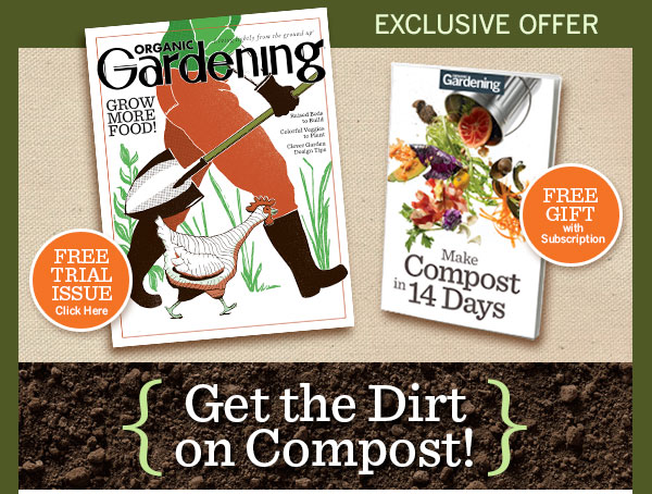 Get the Dirt on Compost!