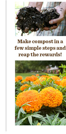 Make compost in a few simple steps and reap the rewards!