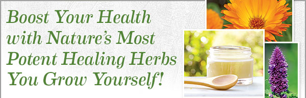 Boost Your Health with Nature's Most Potent Healing Herbs Your Grow Yourself!