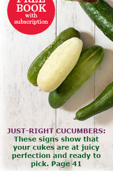 FREE book with subscription! Just-right cucumbers...